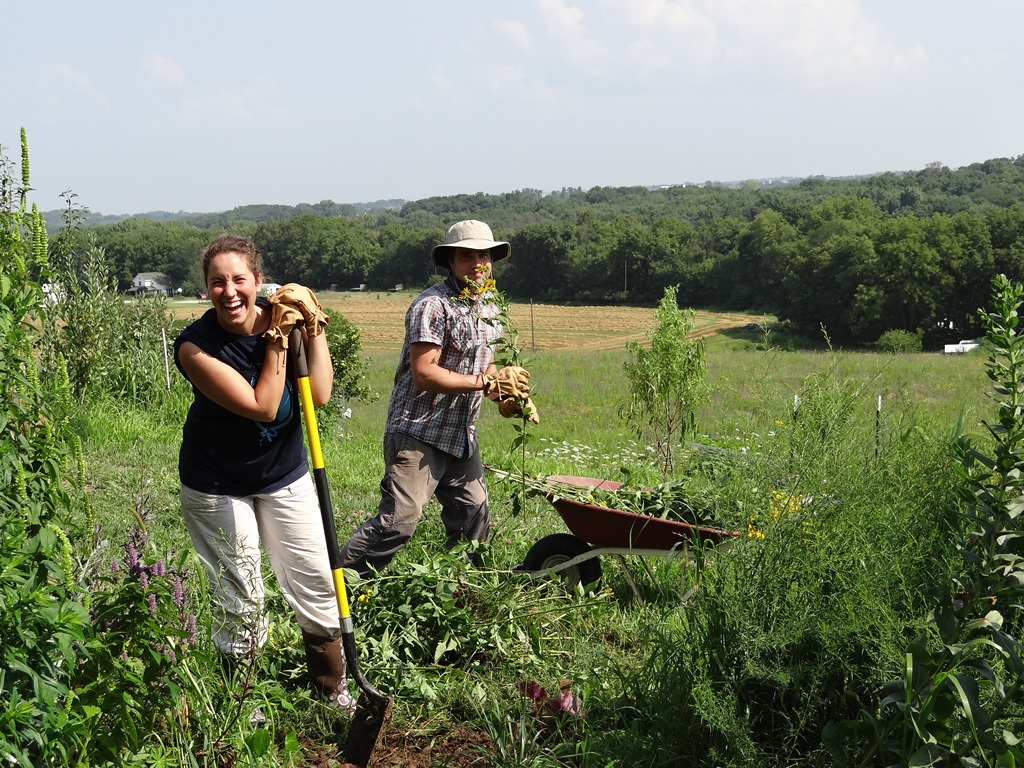 young farmers planting