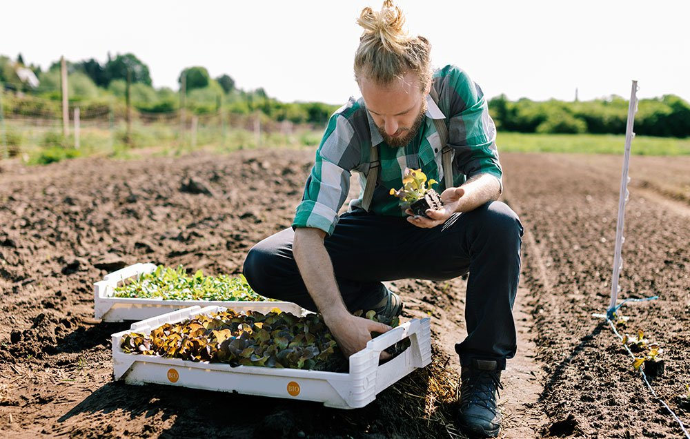 Young farmer planting