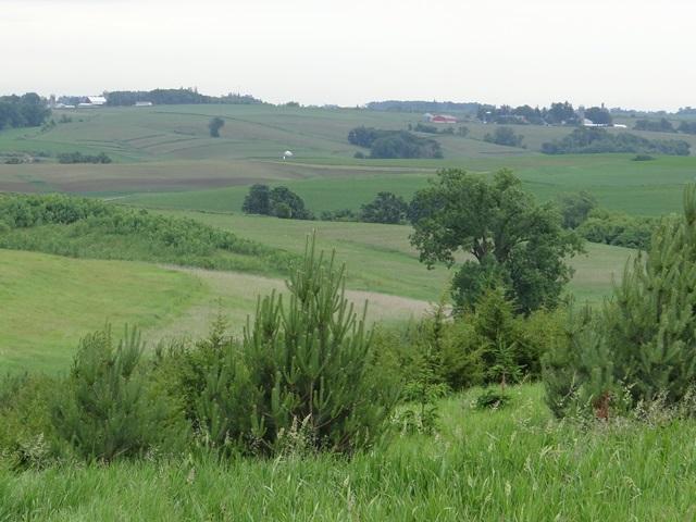 Calmar Farm Vista