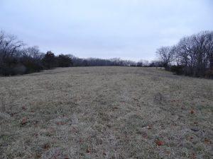 Flat Field on Winter