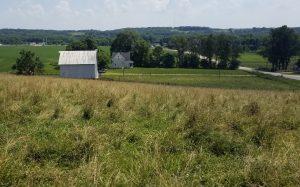 Dows Farm